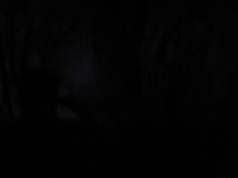 Cave_Interior_Black_IMG_2591